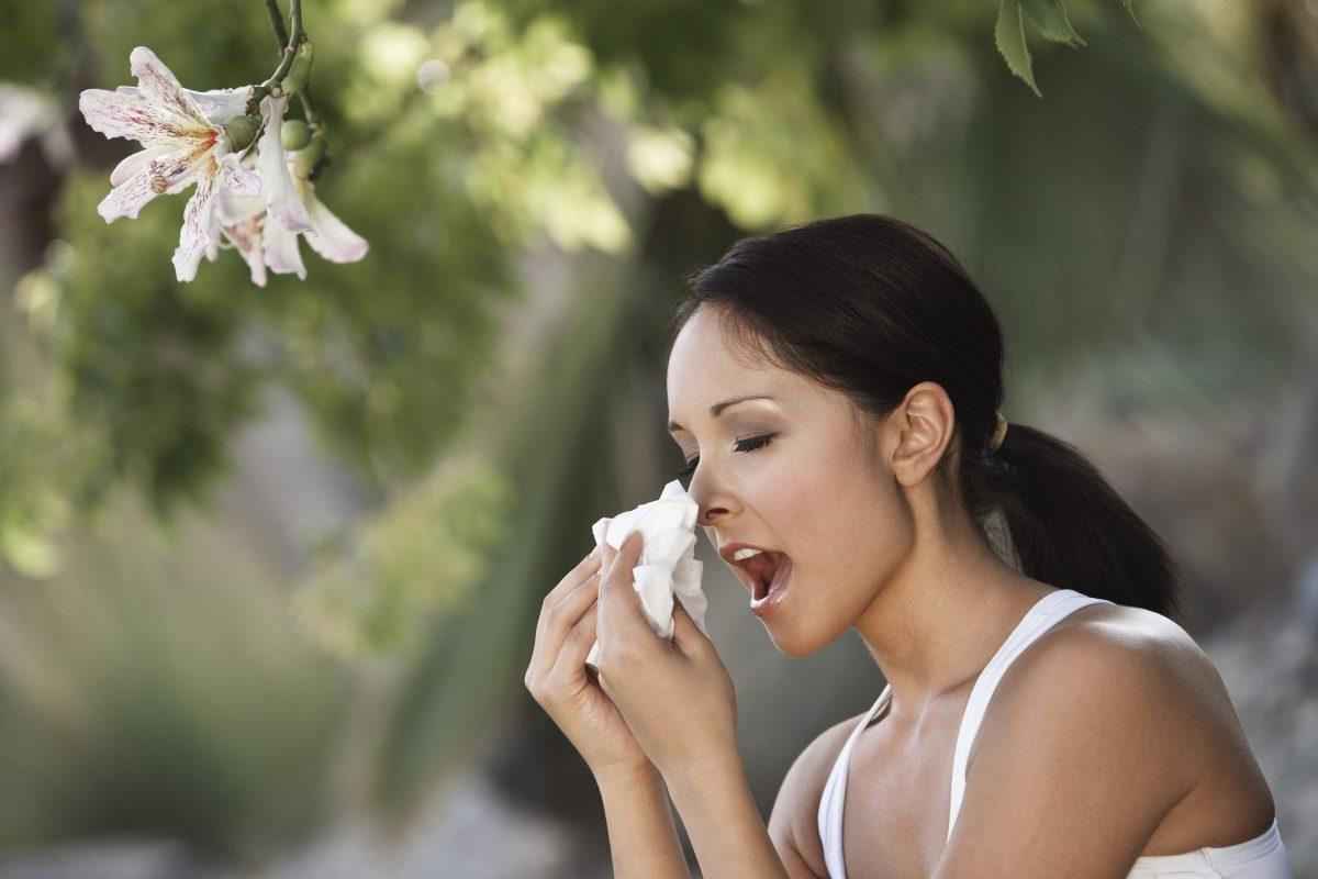 Keeping Allergies at Bay